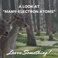 "A look at ""many-electron atoms"""